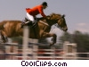 Stock photo  of a horse jumping