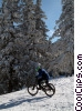 Stock photo  of a cycling in winter