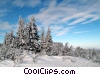 Stock photo  of a winter scene with snow on