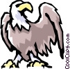 Vector Clip Art graphic  of a Bald eagle