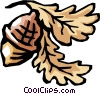 Vector Clip Art image  of an Acorns