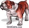 Vector Clip Art graphic  of a Bulldog