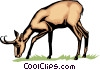 Vector Clipart graphic  of an Antelope