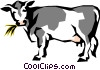 Dairy cow Vector Clipart illustration