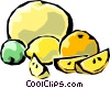 Vector Clipart graphic  of a Citrus fruits
