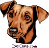 Vector Clip Art picture  of a Dachshund