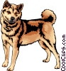 Vector Clip Art graphic  of a Shiba Inu