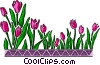 Vector Clip Art graphic  of a Tulip design