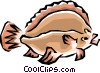 Flounder fish Vector Clipart illustration