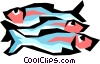 Vector Clip Art graphic  of a Salmon