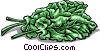 Vector Clip Art image  of a Spinach