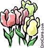 Colorful tulips Vector Clipart graphic