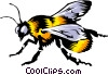Vector Clipart picture  of a Bumblebee