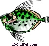 Vector Clipart graphic  of a Buck dory