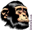 Chimpanzee Vector Clipart picture