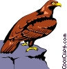 Vector Clipart image  of a Eagle