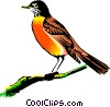 Robin on a branch Vector Clipart picture