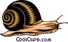 Vector Clipart graphic  of a Snail