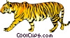 Vector Clip Art image  of a Tiger
