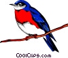 Bluebird Vector Clipart illustration