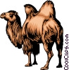 Dromedary Vector Clipart illustration