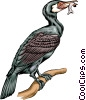 Vector Clipart image  of a Cormorant