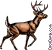 White-tailed deer Vector Clipart illustration