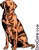 Vector Clip Art graphic  of a Labrador retriever