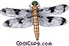 Vector Clip Art image  of a Dragonfly