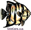 Vector Clipart image  of a Tropical fish