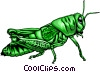 Grasshopper Vector Clipart illustration