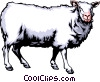 Vector Clip Art picture  of a Sheep