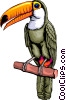 Vector Clipart graphic  of a Toucan