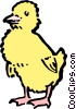 Baby Chick Vector Clip Art graphic