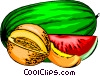 Melons Vector Clip Art picture