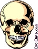 Human skull Vector Clipart graphic