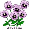 Vector Clip Art graphic  of a Pansies