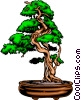 Bonsai tree Vector Clip Art image
