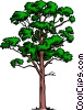 Vector Clip Art image  of a Maple tree
