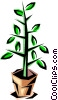 Vector Clip Art graphic  of a Potted plant