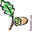 Vector Clip Art graphic  of an Acorn with oak leaf
