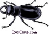 Vector Clipart graphic  of a Beetle