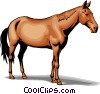 Horse Vector Clipart illustration