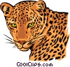 Vector Clipart graphic  of a Leopard