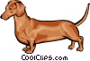 Vector Clipart graphic  of a Dachshund
