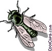 Housefly Vector Clipart illustration