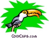 Toucan Vector Clipart picture