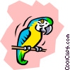 Parrot Vector Clip Art graphic