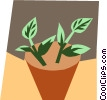 Vector Clipart graphic  of a Houseplants