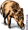 Vector Clip Art picture  of a boar
